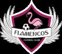FLAMENCOS FC LF7